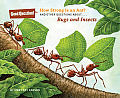 How Strong Is an Ant?: And Other Questions About...Bugs and Insects