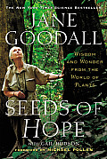 Seeds of Hope Wisdom & Wonder from the World of Plants