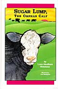 Sugar Lump, the Orphan Calf