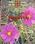 Shishukridan - A Hindi Learning Book for Children