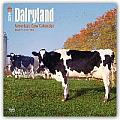 Dairyland America's Cow 2016 Calendar