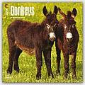 Donkeys 2016 Calendar