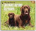 For the Love of Chocolate Labrador Retrievers 2016 Calendar