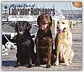 For the Love of Labrador Retrievers 2016 Calendar