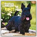 Scottish Terriers 2016 Calendar