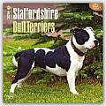 Staffordshire Bull Terriers 2016 Calendar