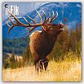 Elk 2016 Calendar