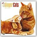 Ginger Cats 2016 Calendar