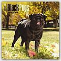 Black Pugs 2016 Calendar