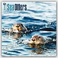 Sea Otters 2016 Calendar