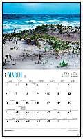 Wild & Scenic Florida 2016 Calendar