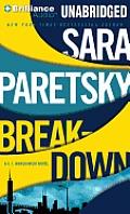 V. I. Warshawski #15: Breakdown
