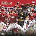 2013 Arizona Diamondbacks 12x12 Wall