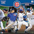 2013 Chicago Cubs 12x12 Wall