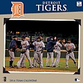 LL 2014 Detroit Tigers 12x12 Wall: Detroit Tigers