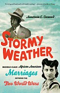 Stormy Weather Middle Class African American Marriages Between The Two World Wars
