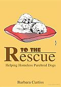 To the Rescue: Helping Homeless Purebred Dogs
