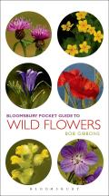 Pocket Guide to Wild Flowers (Pocket Guides)