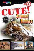 Cute! Animal Babies: Level 1 (Spectrum(r) Readers)