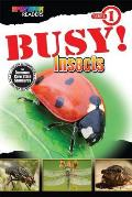 Busy! Insects: Level 1 (Spectrum(r) Readers)