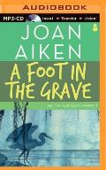 A Foot In The Grave by Joan Aiken
