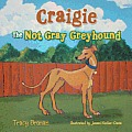 Craigie the Not Gray Greyhound