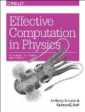 Effective Computation in Physics