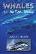 Whales Of The West Coast