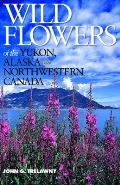 Wildflowers of the Yukon, Alaska & NW Canada