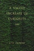 A Velvet Increase of Curiosity