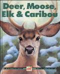 Deer, Moose, Elk & Caribou (Kids Can Press Wildlife)
