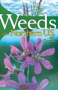 Weeds Of The Northern U S & Canada