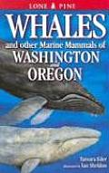 Whales & Other Marine Mammals of Washington & Oregon