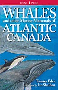 Whales & Other Marine Mammals of Atlantic Canada