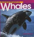 Welcome to the World of Whales (Welcome to the World)