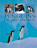 Penquins of the World
