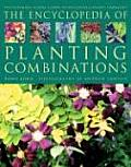 Encyclopedia Of Planting Combinations