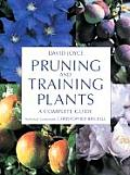 Pruning & Training Plants A Complete Guide