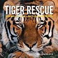 Tiger Rescue: Changing the Future for Endangered Wildlife
