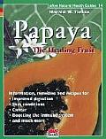 Papaya Healing Fruit
