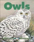 Owls (Kids Can Press Wildlife)