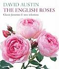 English Roses Classic Favorites & New Selections