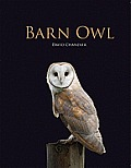 Barn Owl Cover