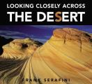 Looking Closely Across The Desert