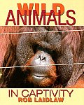 Wild Animals in Captivity