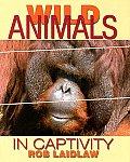 Wild Animals in Captivity