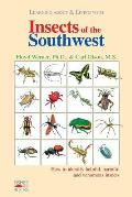 Insects of the Southwest: How to Identify Helpful, Harmful