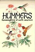 Hummers Hummingbirds Of North America
