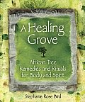 Healing Grove African Tree Remedies & Rituals for the Body & Spirit