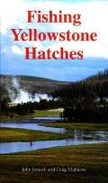Modern Book Collecting Cover